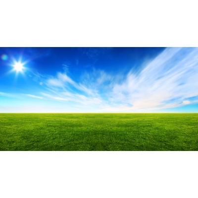Fototapeta Trava in nebo